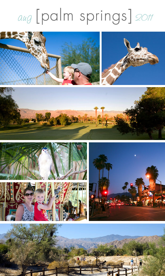 Travel palm springs elizabeth bean photography for Travel to palm springs